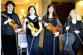 Ptarmigan Classical and Rock String Quartet