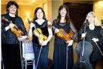 Ptarmigan Classical and Rock String Quartet image