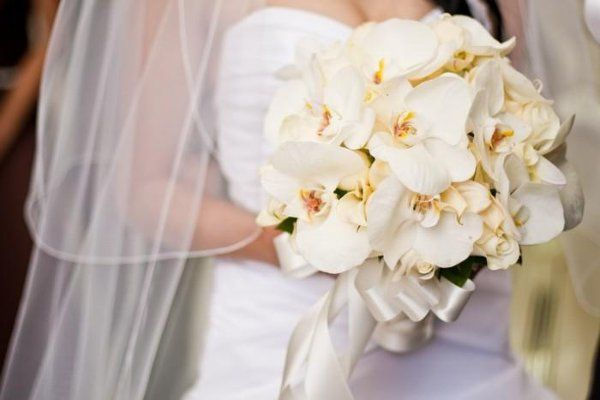 Tmx 1246910416295 Ninawedding4 Trabuco Canyon wedding planner