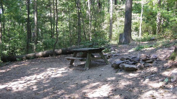 There are 12 wooded tent sites of various shapes and sizes, not too close together...they all have...