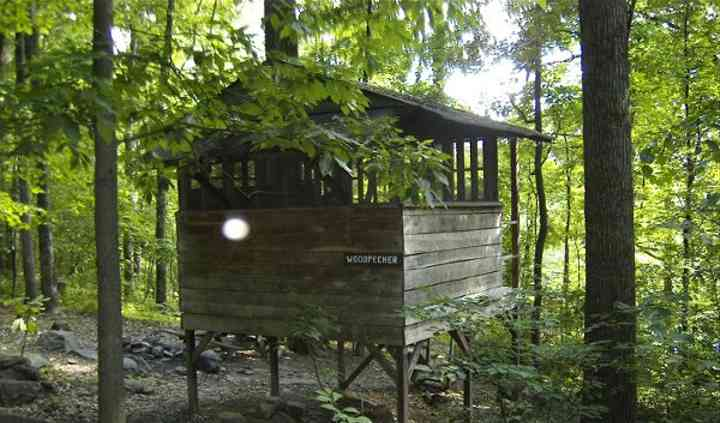treehouse campground