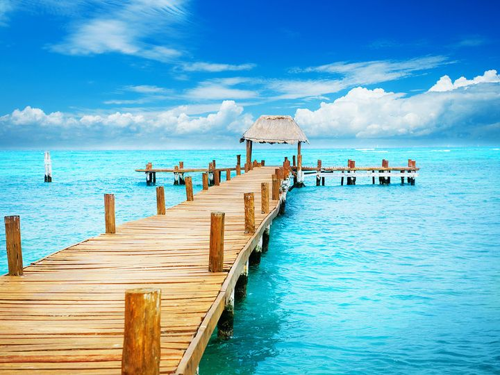 Tmx 1439340555998 Blueshell Vacations Dock Sarasota wedding travel