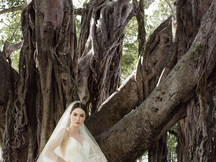 Tmx 1530542901 5511436cece1bced 1530542899 4b8ecfd9c20b4ac0 1530542897936 2 DEBUTANTE 5 Alexandria wedding dress