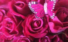 Tmx 1332188737075 Pinkbouquet Santa Maria wedding planner