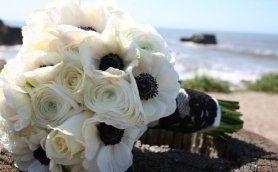 Tmx 1332188749291 Whitebouquet Santa Maria wedding planner