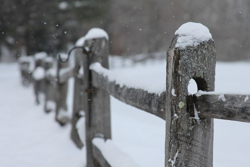 Snow on the fences