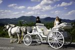 Lexington Carriage Company image