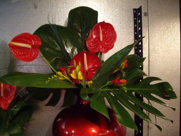 Tmx 1313093969426 Davis2 Carson City wedding florist