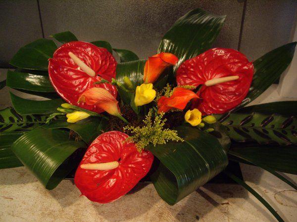 Tmx 1313094014682 Davis3 Carson City wedding florist