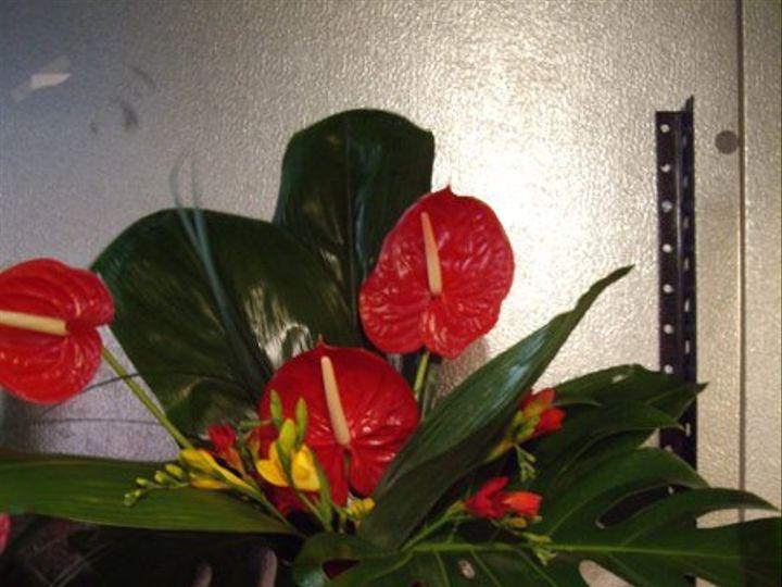Tmx 1313094053261 Davis4 Carson City wedding florist
