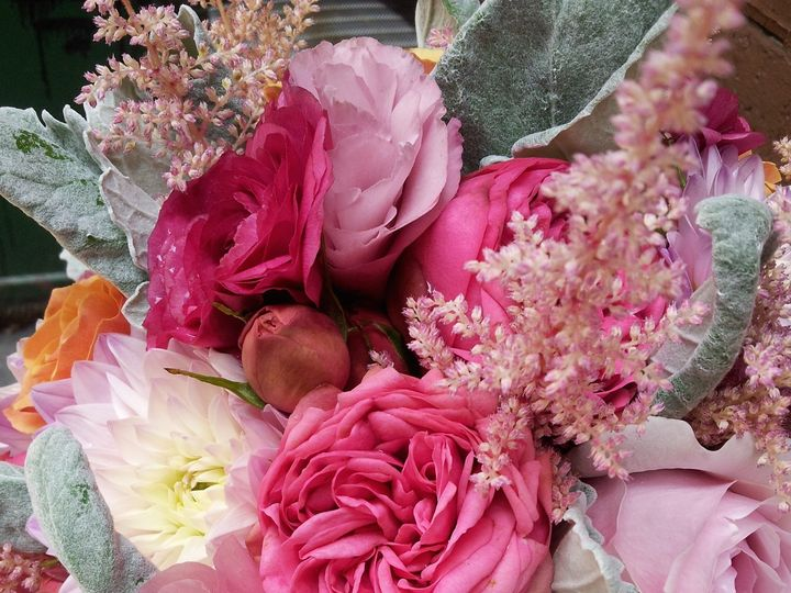 Tmx 1414948870351 20140801130223 Portsmouth, NH wedding florist