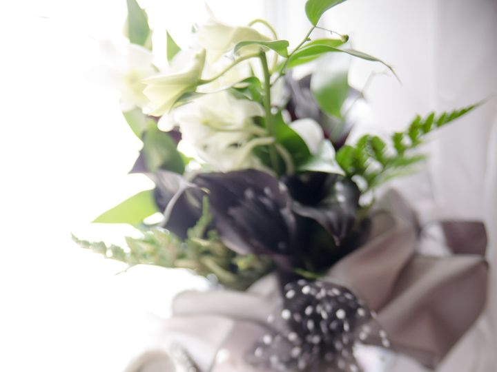 Tmx 1483391022398 Dsc2350 Louisville, Kentucky wedding photography