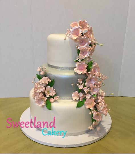 Sweetland Cakery Bmkle9437