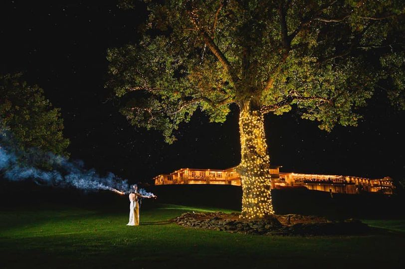 Woodstone Tree