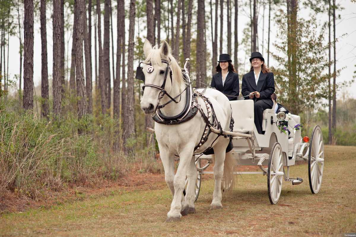 Pinto Carriage Works, LLC