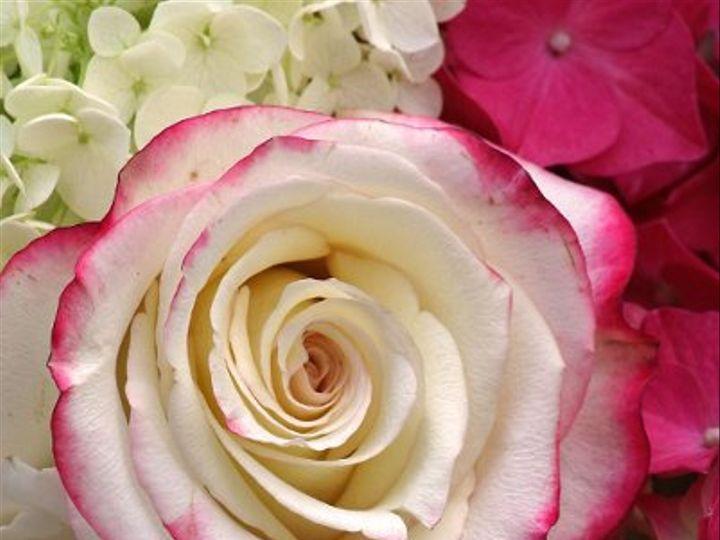 Tmx 1247253864666 IMG5819 Newfoundland wedding florist