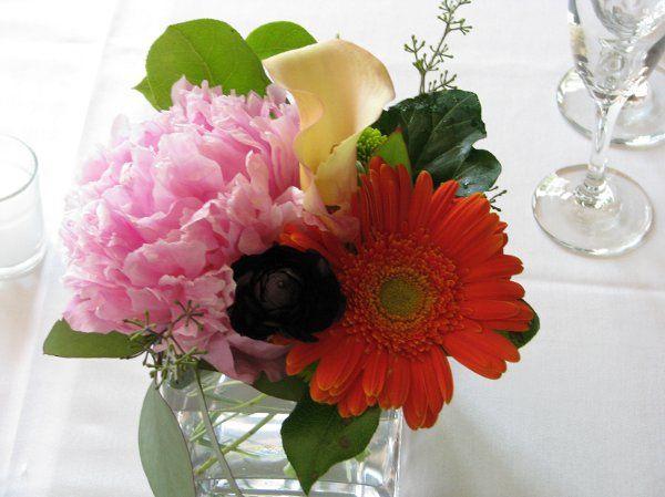 Tmx 1216166958634 Picture095 Mission Viejo wedding florist
