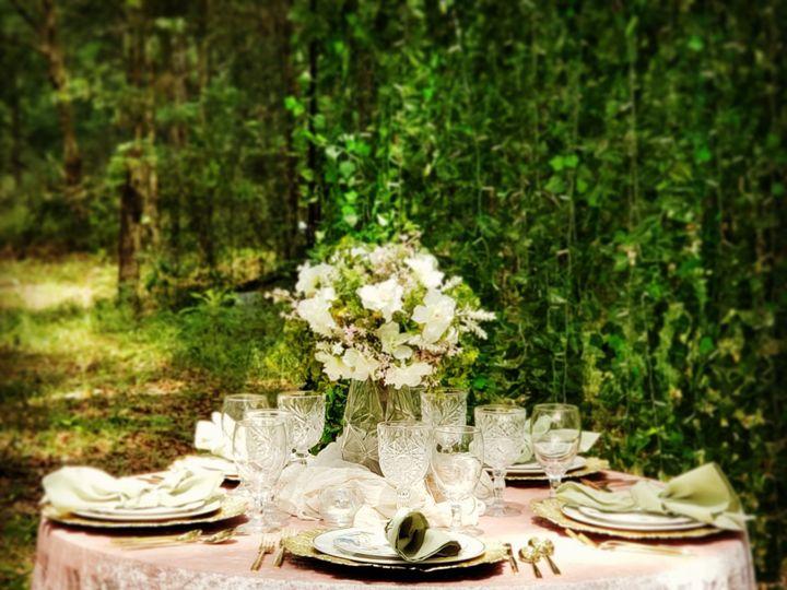 Tmx Img 20200618 183215 142 51 1945145 159303235277300 Jacksonville, FL wedding rental