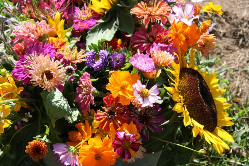 Wildflowers and sunflowers, perfect for a late August or fall wedding!
