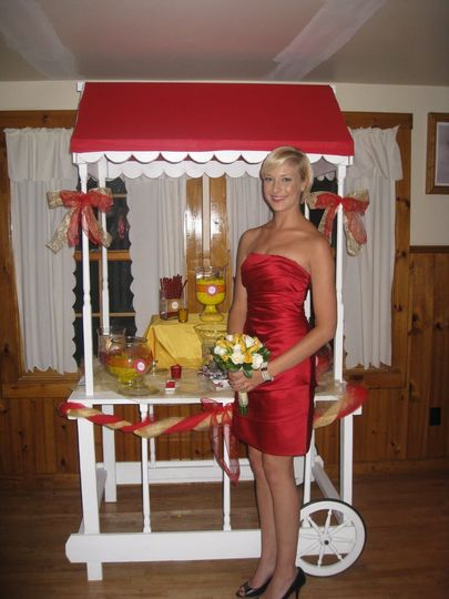 """Party Cart dressed to match your decor/theme. """"Julie's Party Cart"""""""