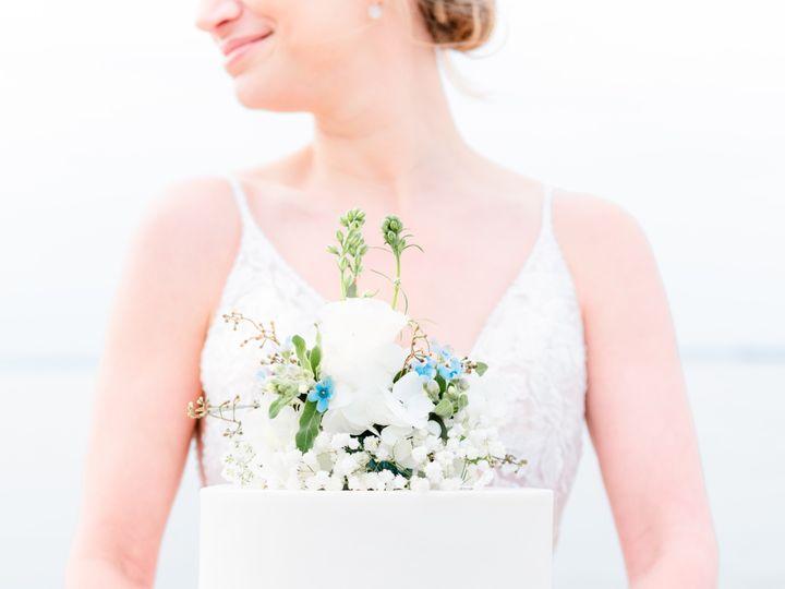 Tmx  D855647 51 1066245 158895292869686 Lovettsville, VA wedding photography