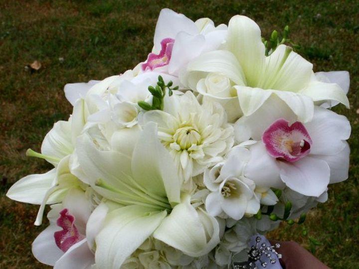Tmx 1328050941166 Cybidiums Tampa, FL wedding florist