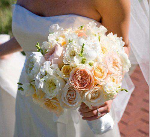 Tmx 1332456689751 Bridalniceboquet Tampa, FL wedding florist