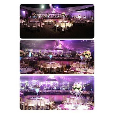Tmx 24 51 496245 1564499106 Tampa, FL wedding florist
