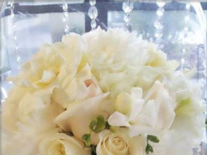 Tmx 984254 632368880124411 1472489879 N 51 496245 1563996505 Tampa, FL wedding florist