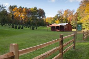 Tuckaway Tree Farm