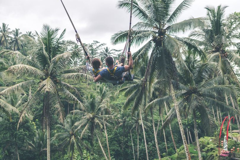 Jungle advantage