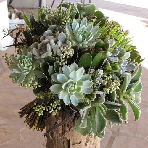Tmx 1397140189276 River District  Fort Myers wedding florist
