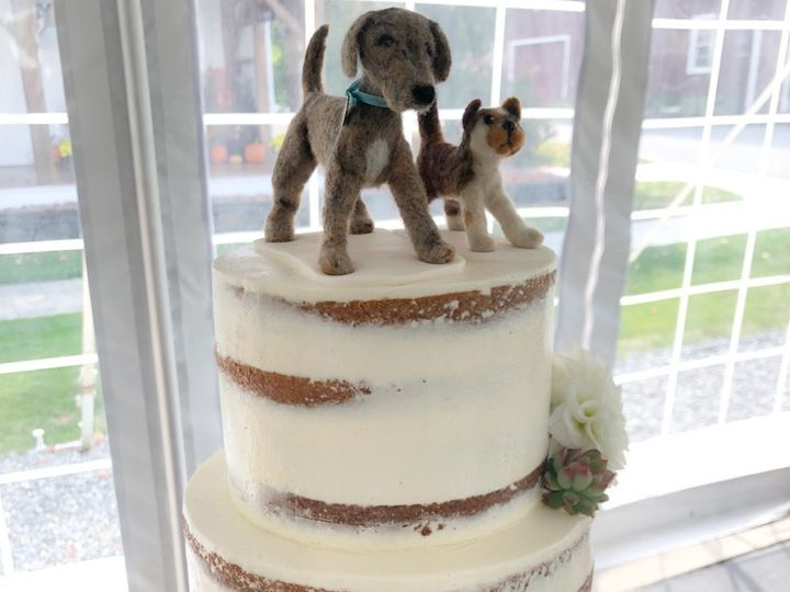 Tmx Seminaked Cake With Cat Dog 51 938345 157923106110592 Bennington, VT wedding cake