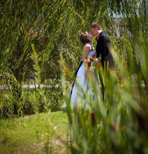 Under the Weeping Willow...