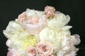 Sharon's Flowers