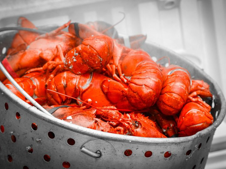 Tmx 1403710018782 Lobster 1 Derby, CT wedding catering