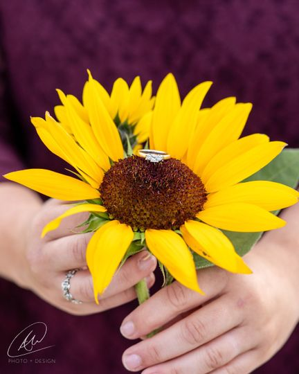 Wedding ring in sunflower
