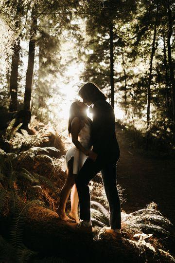 Oregon Forest Engagement