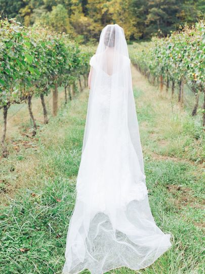 Bridal Portrait - Vineyard
