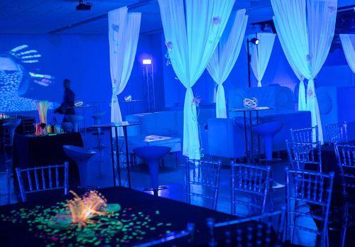 Tmx 1524035349 1b4a71923bd72d21 1524035348 Ca1af72ba09d56ef 1524035345532 5 Gill01 Brooklyn wedding planner