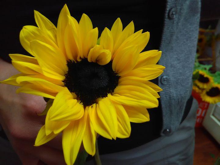 Prudence Island Flower Girl