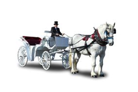 Horse Drawn Carriages & Hearse of Texas LLC