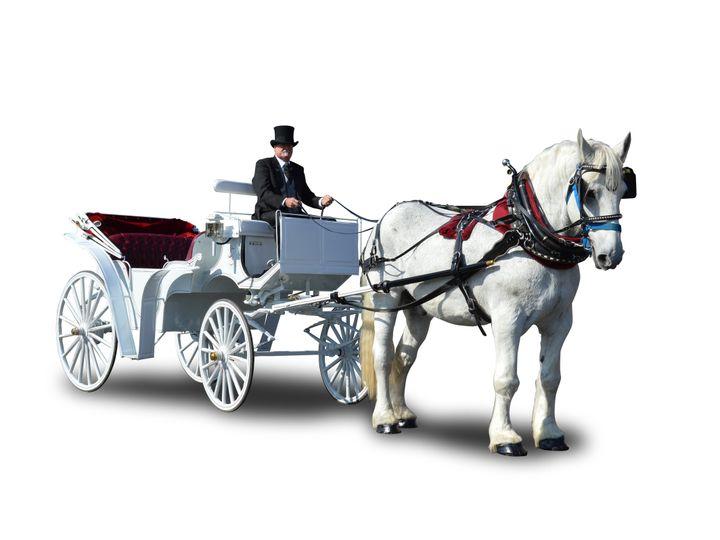 Tmx 1435080503464 Wedding Carriage Humble wedding transportation