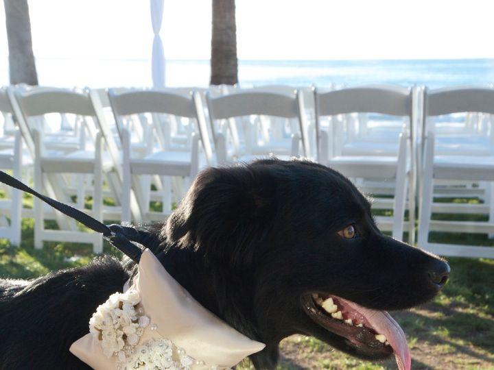 Tmx Img 4360 51 1991545 160299904174971 San Diego, CA wedding planner
