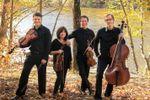 Amadeus Quartet image