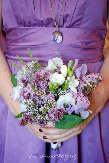 purple lilacs susan sancomb photos