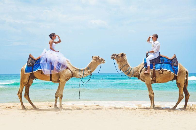 Destination Wedding Camel