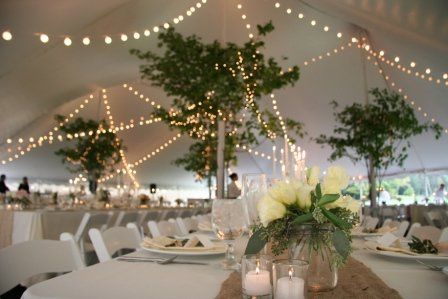 Tent lights and decor