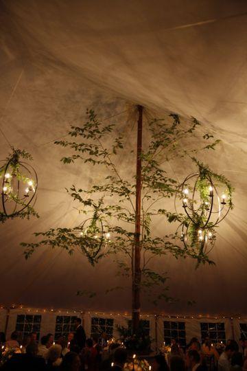Tent lighting and tree decor