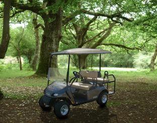 elite cart 2